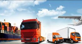 Cargo Company – A Good One Can Be Extremely Helpful