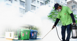 Employing The Services Of Pest Control Companies